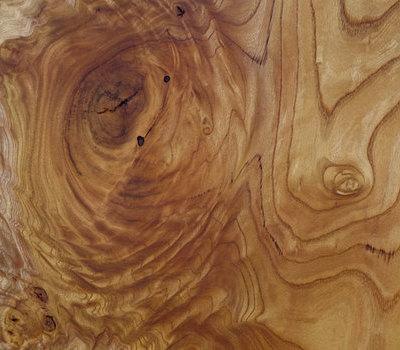 コレクションギャラリーに美しい杢の欅のサムネイル