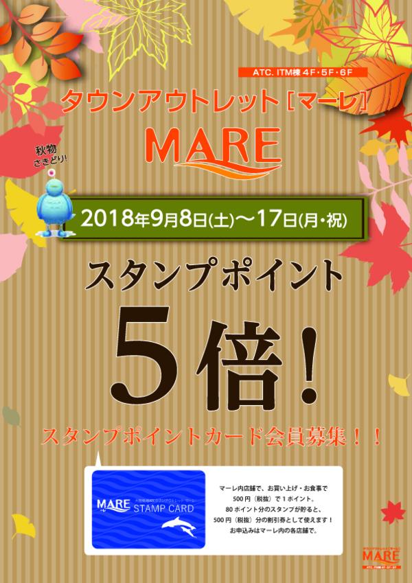 """MARE秋の特別優待セール""一枚板10%off"